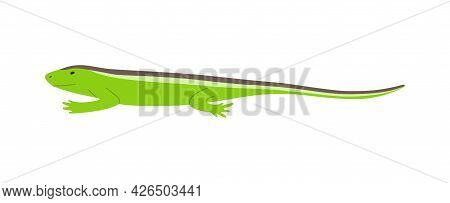 Side View Of Green Lizard With Stripes On Back Flat Vector Illustration Isolated.