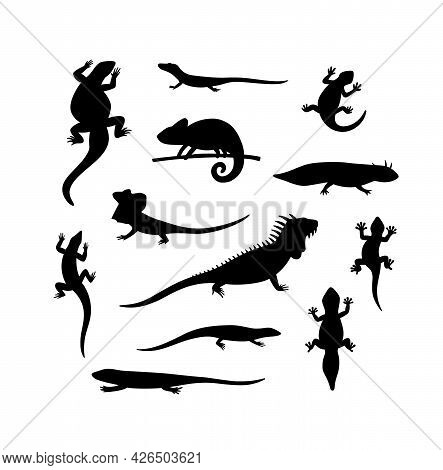 Set Of Black Silhouettes Lizard, Salamander, Chameleon, Iguana And Other Reptiles