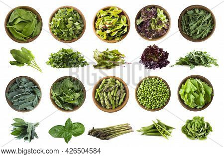 Leafy Vegetables Isolated On White. Spinach Leaves, Parsley, Mangold, Lettuce, Arugula, Sage, Basil,
