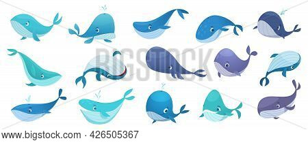 Whales Collection. Ocean Underwater Life With Big Swimming Blue Fishes Cute Wild Whales Exact Vector