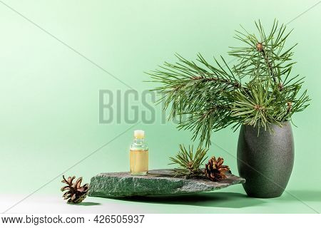 Composition With Pine Oil Glass Bottle, Branches, Cones On Grey Stone Granite On Mint Green. Copy Sp