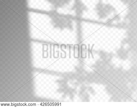 Modern Shadow Overlay, Great Design For Any Purposes. Blurred Soft Shadow From The Window And Branch