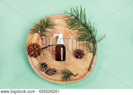 Top View Small Glass Bottle With Essential Pine Oil, Branches, Cones On Wooden Saw Cut On Mint Green