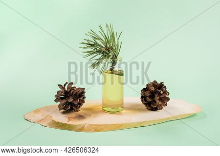 Essential Pine Oil In Glass Bottle With Cones On Wooden Saw Cut On Mint Green.