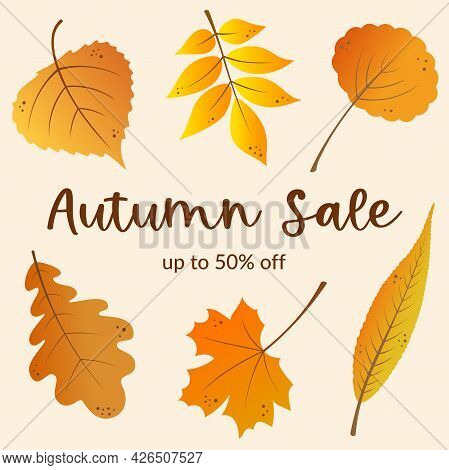 Autumn Sale Banner Template Design With Golden Leaves Background. Fall Leaves. Marketing Materials.