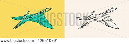 Dinosaur Pterosaur, Skeletons, Fossils, Winged Lizard. American Prehistoric Reptiles, Jurassic Anima