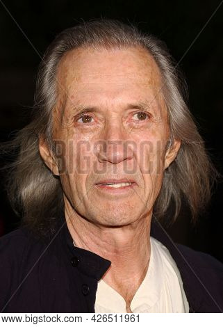 LOS ANGELES - JUN 18: Robert Carradine arrives to  'Charlie's Angels 2: Full Throttle' LA Premiere on June 18, 2003 in Hollywood, CA