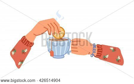Drinking Or Making Aromatic Hot Beverage, Isolated Hands Holding Cup Of Tea With Slice Or Lemon Or O