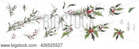 A Set Of Winter Berries ( Holly, Viscum ), Isolated On A White Background. Realistic Branches, Hand-