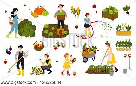 Local Organic Production Set. Agricultural Workers Planting And Gathering Crop. Garden, Farm And Agr