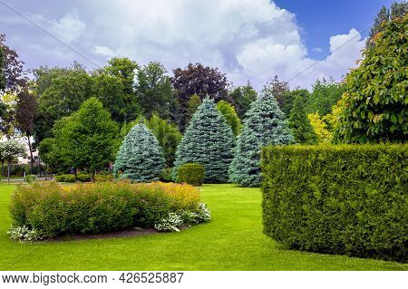Landscaping Of A Park With A Garden Bed And Deciduous Trees With Leaves And Pine Needle On A Green L