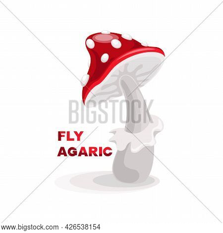 Fly Agaric. Isolated Vector Image On White Background. Card, Banner, Poster, Sticker With Fly Agaric