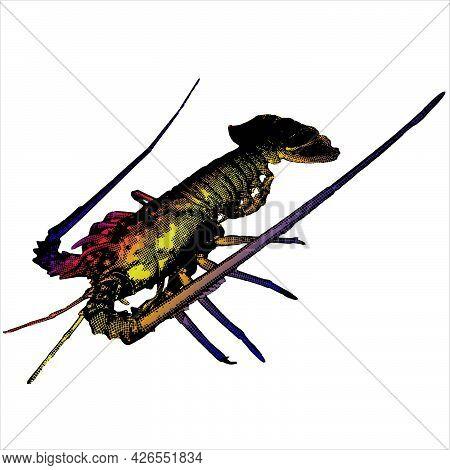 Lobster Vector 3d Mesh Art Cartoon. Sea Crayfish
