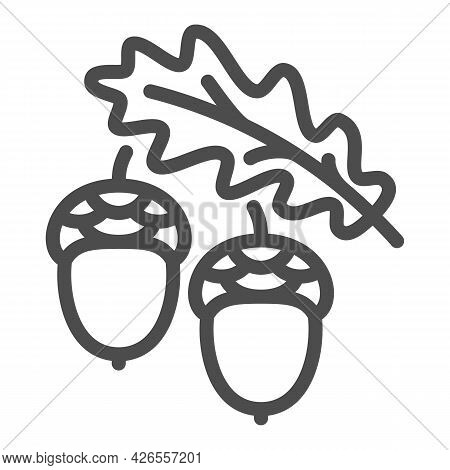 Acorns And Oak Leaf Line Icon, Forest Tree Concept, Oak Twig With Acorns Vector Sign On White Backgr