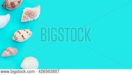 Composition Of Exotic Seashells On Blue Background.