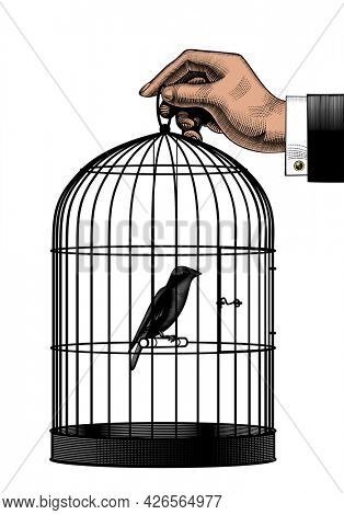 Bird sitting inside a cage. Male hand holding a cage with a canary. Vintage engraving stylized drawing.
