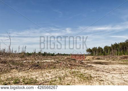 A Red Gate With No Fence In A Tree Cleared Lot In The Forest - In Rural Ga