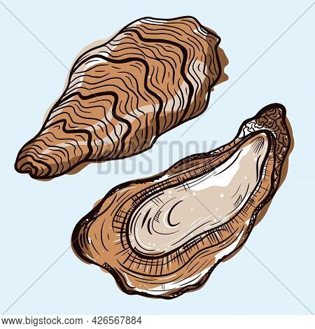 Oysters Vector Icon. Isolated Illustration Of An Open And Closed Oyster. A Seafood Delicacy. Colored