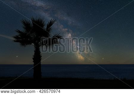 Beautiful Night Landscape With Palm, Ocean And The Milky Way Galaxy. Beautiful Scene In Sea