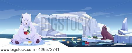 Arctic Animals Living In Trash, Wild Polar Bear And Seal Sitting On Ice Floes In Polluted Sea With G