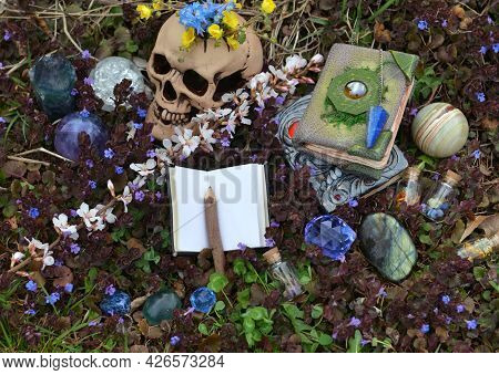 Beltane Still Life With Skull, Witch Book, Crystal Stones And Spring Flowers Outside. Esoteric, Goth