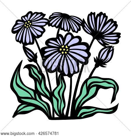 Purple Daisies And Green Leaves. Buds And Blossoming Flowers With Black Outline On A White Backgroun