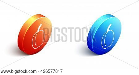 Isometric Plum Fruit Icon Isolated Isometric Background. Orange And Blue Circle Button. Vector