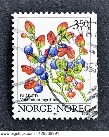 Norway - Circa 1995 : Cancelled Postage Stamp Printed By Norway, That Shows Common Bilberry Vacciniu