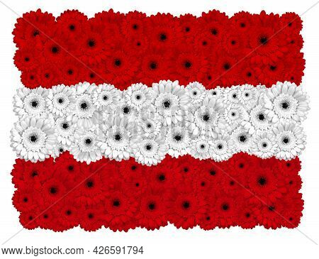 Austrian Flag Made Of Gerbera Flowers, Isolated On White