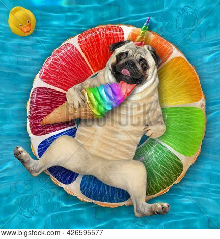 A Dogicorn Pug With A Cone Of Ice Cream Is Lying On An Inflatable Fruit In A Swimming Pool At The Re