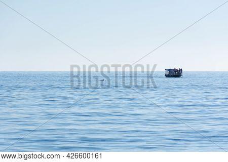 Balaklava Crimea On November 04, 2018. A Small Tourist Boat Is On The Horizon. Full Calm At Sea, Dol