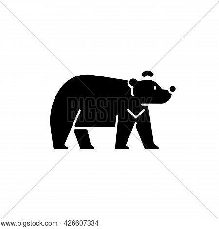 Formosan Bear Black Glyph Icon. White-throated Taiwanesse Mammal. Asiatic Wildlife Representation. S