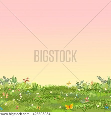 Green Glade. Summer Meadow. Morning. Juicy Grass Close Up. Grassland. Place On The Field. Pasture. C