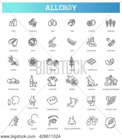 Allergy And Allergens Vector Line Icons Set. Allergy To Animal Hair, Food And Pollen