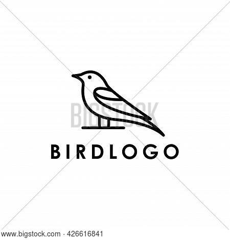 Hummingbird Bird Animal Logo Design Vector Element