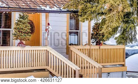 Pano Home Facade Amidst Huge Evergreen Tree And Snowed In Landscape In Winter