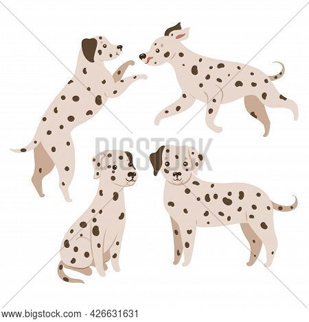 Set Of Dalmatian Dogs Isolated On White Background. Vector Image.