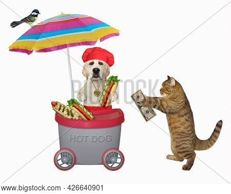 A Beige Cat Buys A Hot Dog In A Grey Mini Movable Kiosk. White Background. Isolated.