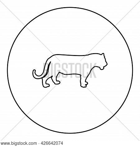 Tiger Silhouette In Circle Round Black Color Vector Illustration Contour Outline Style Image Simple