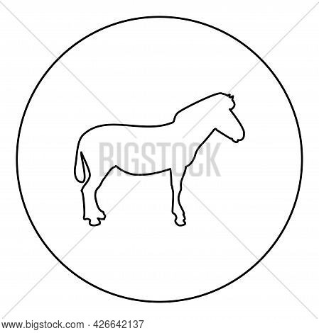 Zebra Stand Animal Standing Silhouette In Circle Round Black Color Vector Illustration Contour Outli