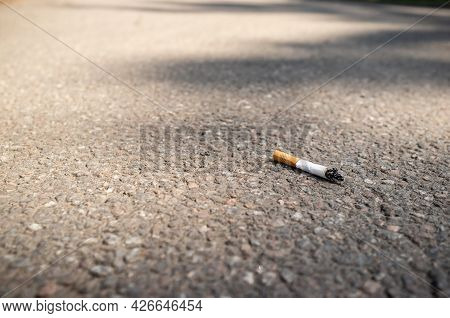 Cigarette Butt Thrown On The Asphalt Pavement. Bad Habit Dangerous For Human Health And Environmenta