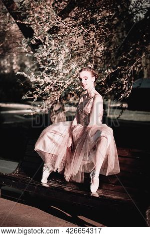 A Ballerina In A Long Pink Dress Is Sitting On The Back Of A Bench With Her Legs Wide Apart With Her