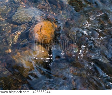 Clean Shallow Creek Water Flow Over Orange Stones