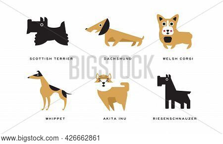 Dog Breeds Depicted In Flat Style With Scottish Terrier And Dachshund Vector Set