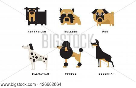 Dog Breeds Depicted In Flat Style With Rottweiler And Bulldog Vector Set