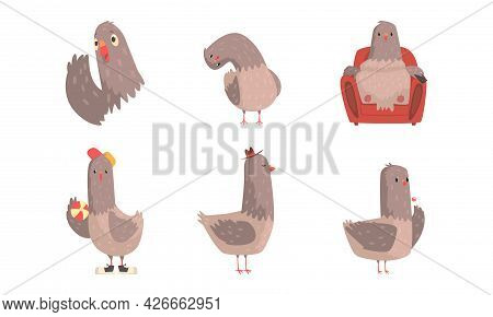 Funny Grey Pigeon Character With Ball And Resting In Armchair Vector Set