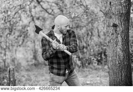 Brutal And Attractive Male In Forest. Power And Strength. Lumberjack Carry Ax. Bald Woodsman Worker.