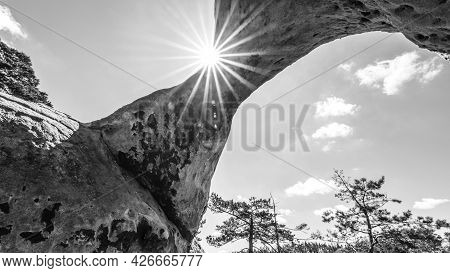 Bottom View Of Unique Sandstone Arch In Pine Forest On Dry Sunny Summer Day. Bohemian Paradise, Czec