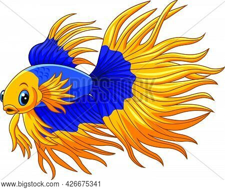 Vector Illustration Of Cartoon Gold And Blue Siamese Fighting Fish