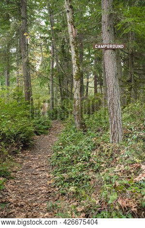 Trail In The Middle Of The Woods With Campground Signage Posted On A Tree At Tacoma, Washington